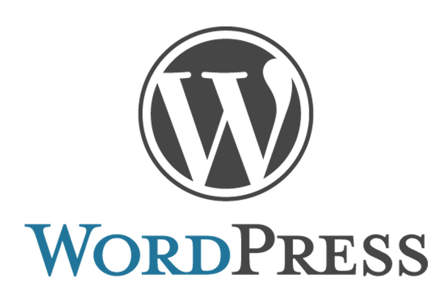 Wordpress-Entwickler